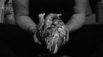 Poisoning by Raasha Gutierrez